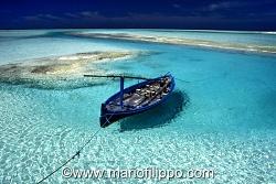MALDIVE ..L'ALTRO PARADISO