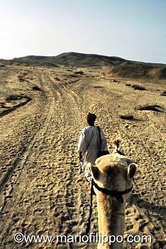 EGITTO-VERSO IL DESERTO DEL SINAI (DESERTO ORIENTALE)