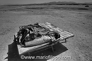 DALL'EGITTO VERSO IL SUDAN,MERCATO DEI DROMEDARI NEL DESERTO
